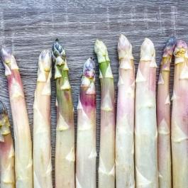 01_asparagus